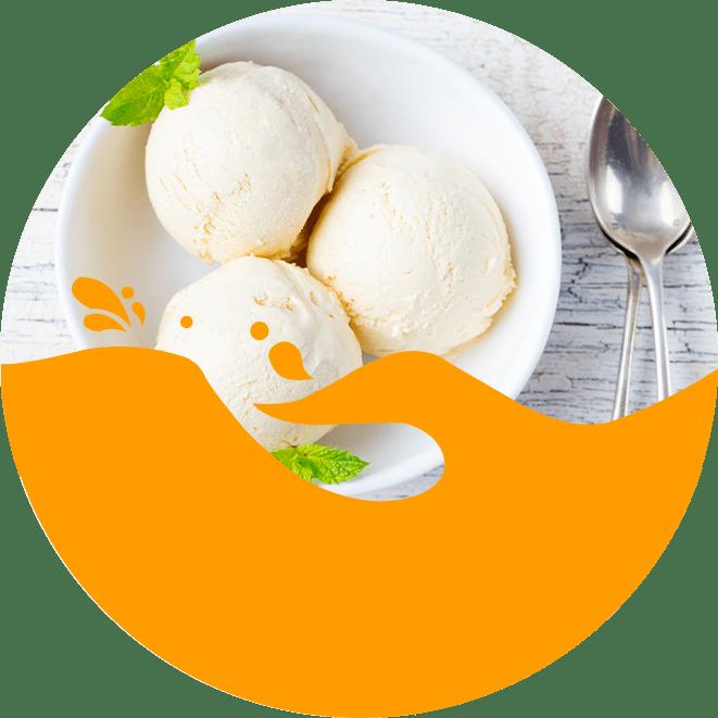 Basic Vanilla Ice Cream